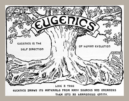 Sobering, Haunting Eugenics Classes at BYH
