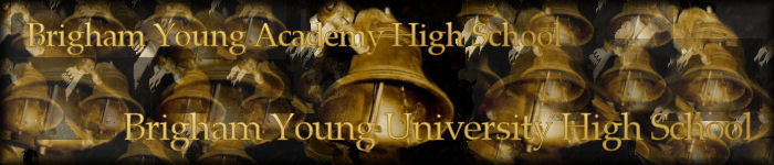 Brigham Young High Banner No. 23 - 150