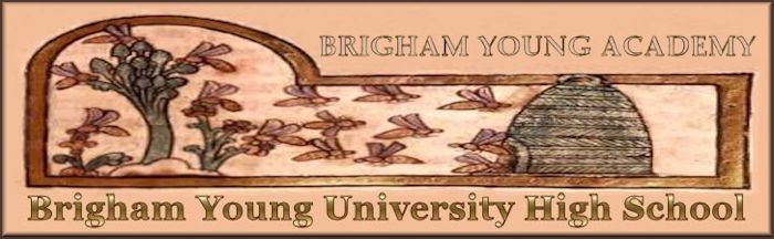 Brigham Young High Banner No. 21