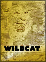 BYH Wildcat Cover - 1946