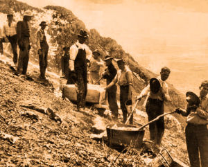 1908 - Hot lime was carried up the mountain